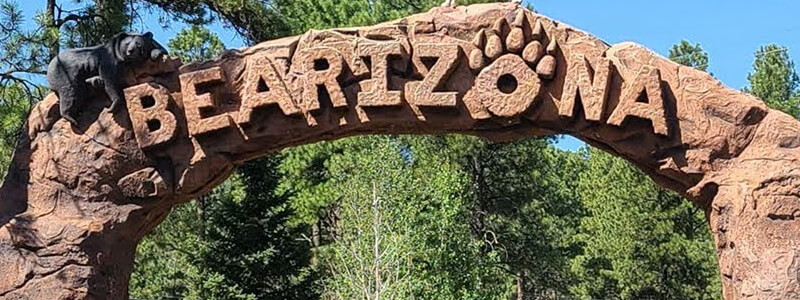 Bearizona Wildlife Park – Williams, Arizona
