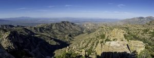 Explore Mt. Lemmon's Life Zones Near Tucson